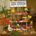 Фото овощной экспозиции